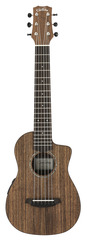 Cordoba Mini O-CE Ovangkol Travel Acoustic Electric