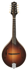 Collings MT A-Model Mandolin Fully Carved Sunburst