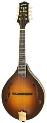 Collings Mt2 Sunburst with Case