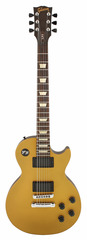 Gibson LPJ Rubbed Gold Top Dark Back
