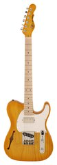 G&L ASAT Classic Bluesboy Semi-Hollow Honeyburst