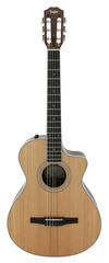 Taylor 412CE-N Western Red Cedar Nylon Acoustic Electric