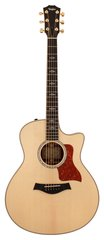 Taylor 816CE-LTD 2012 Spring Limited Grand Symphony Cocobolo Acoustic Electric