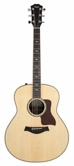 Taylor 818E Grand Orchestra Acoustic Electric Bundle