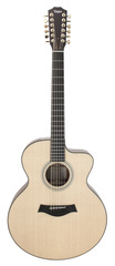 Taylor LKSM Leo Kottke Signature Model 12 String Acoustic