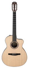 Taylor NS24-CE Grand Auditorium Nylon Acoustic Electric