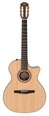 Taylor NS34-CE Grand Auditorium Nylon Acoustic Electric