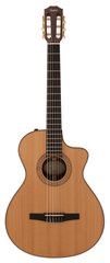 Taylor NS72-CE Grand Concert Nylon Acoustic Electric
