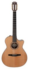Taylor NS74-CE Grand Auditorium Nylon Acoustic Electric
