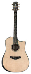 Taylor PS10CE NOS Dreadnought Presentation Cocobolo AA Sitka